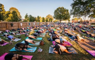 Large fenced in yard full of people in down dog position on yoga mats